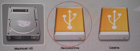 Select Recovery Drive